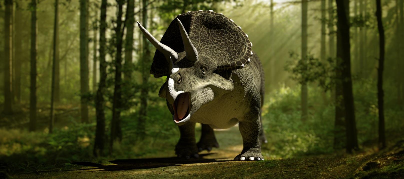 Arquivo Para Triceratops Baloom Animation Studios